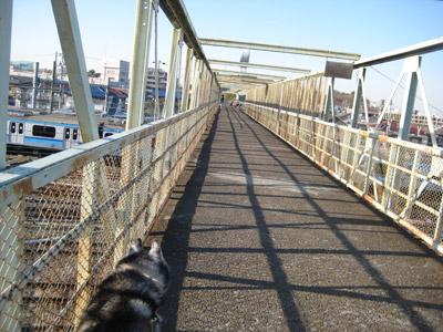 久し振りの跨線橋