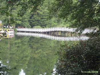 水面に映る七井橋