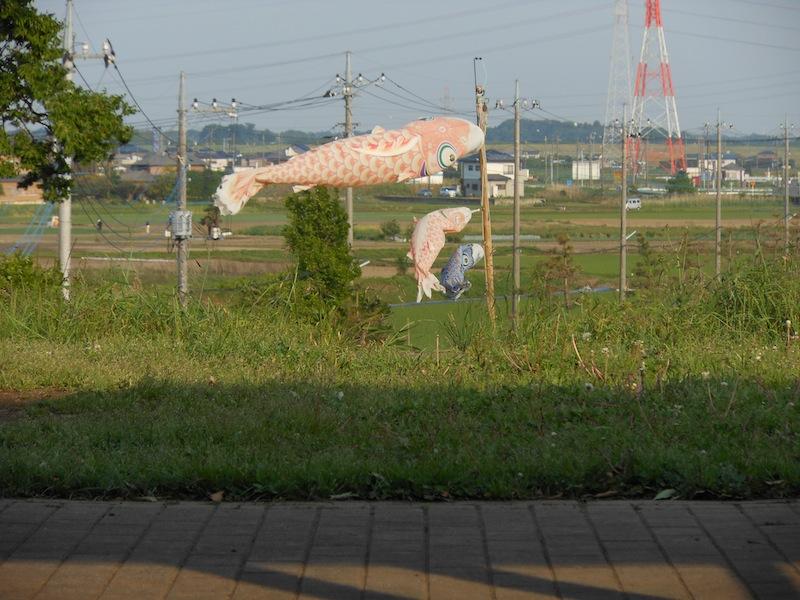 20120520_09.jpg