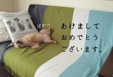 fc2blog_201401042120421d9.jpg
