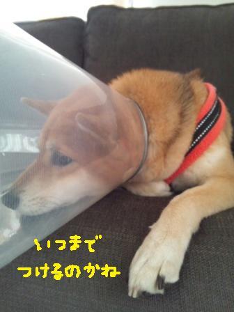 ichi-sp-9.jpg