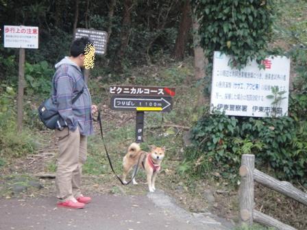 ichi118-g.jpg