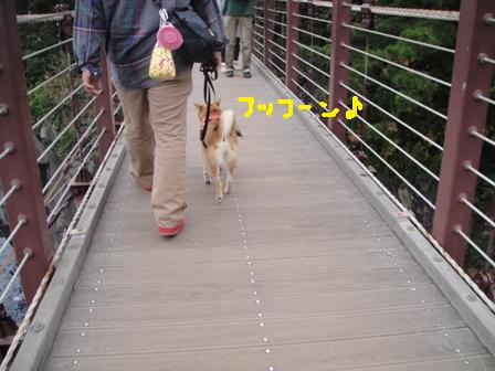 ichi118-j.jpg