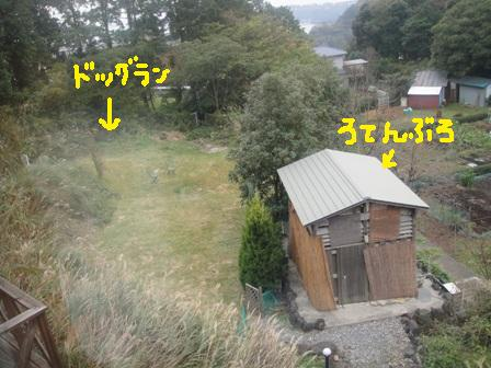 ichi118v.jpg