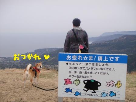ichi118z.jpg