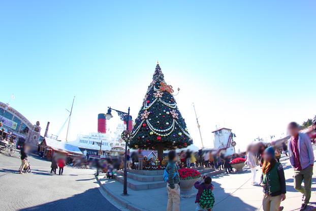 クリスマスツリー特集6