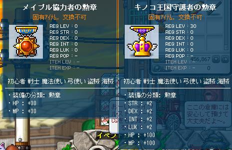 20101129勲章