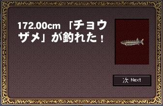 11_8_2_3.jpg