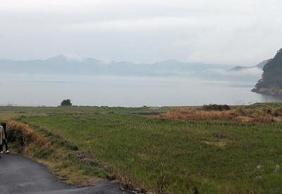 春霞の池田湖