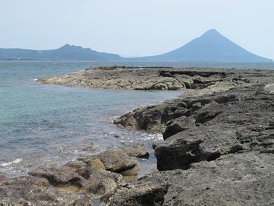 自然が作りだした海の中の道