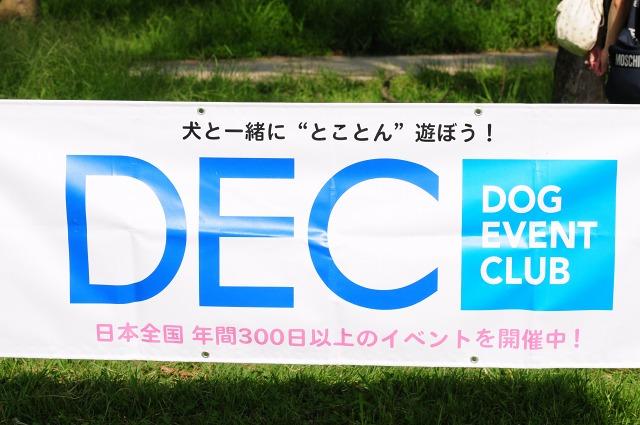 DSC_1946.jpg