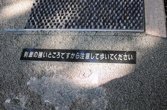 DSC_2695z.jpg