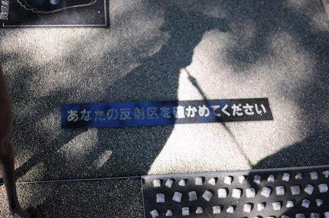 DSC_2699z.jpg
