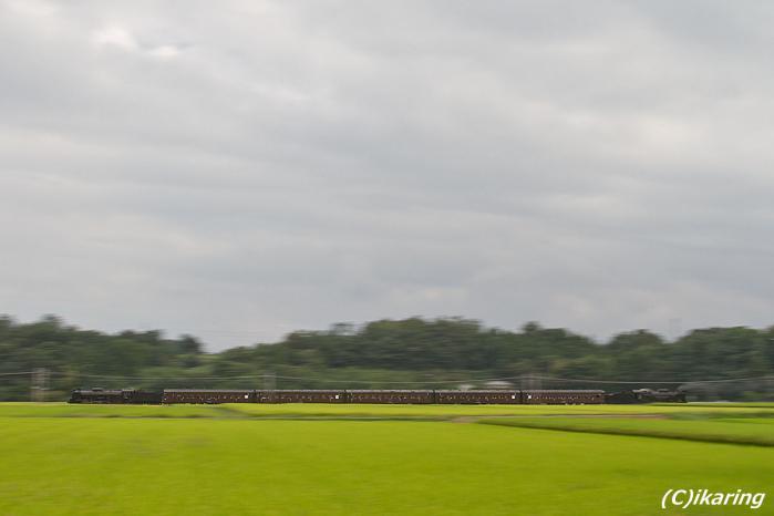 信越本線 SL D51 C61