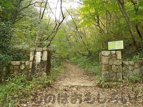 登山道直結の森林植物園東門