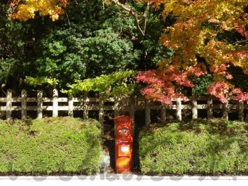 高野山の紅葉と丸ポスト