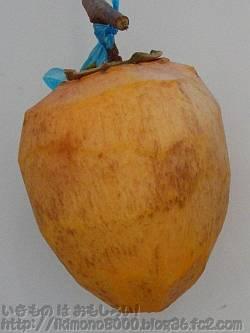 皮をむいて3日目の普通の干し柿
