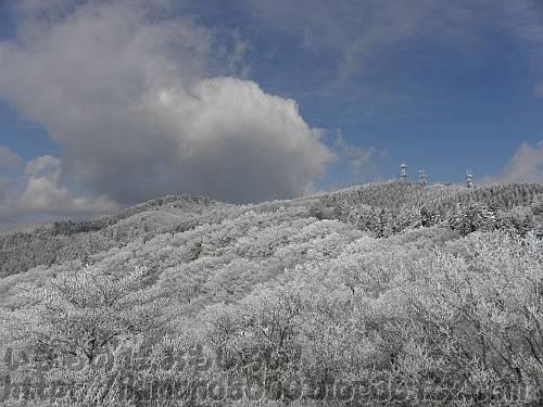 霧氷をまとった金剛山(ちはや園地の展望台から)
