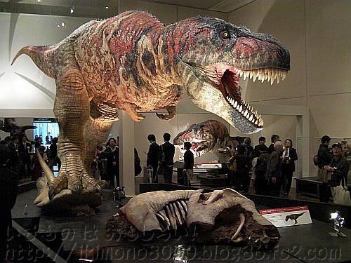 アニマトロニクスのティラノサウルス「新説・恐竜の成長」[大阪市立自然史博物館]