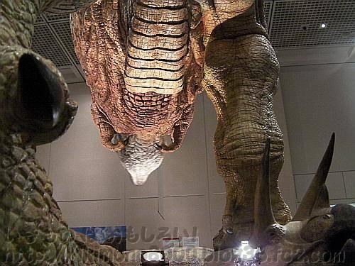 足下から見上げたアニマトロニクスのティラノサウルス「新説・恐竜の成長」[大阪市立自然史博物館]