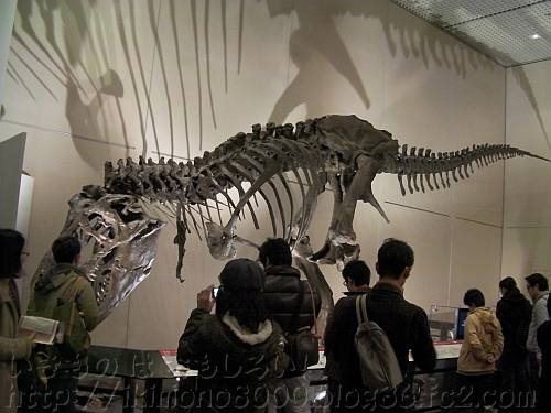 人気のティラノサウルスのワンケル