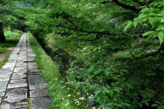 110618tetsugaku007.jpg