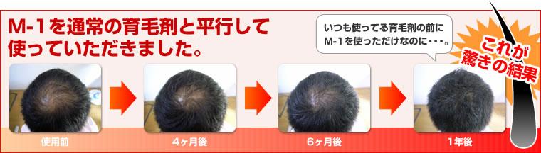 cp_13.jpg
