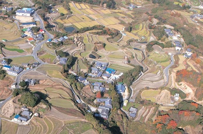 生田航空写真