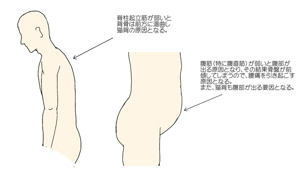 standing-exp-5.jpg