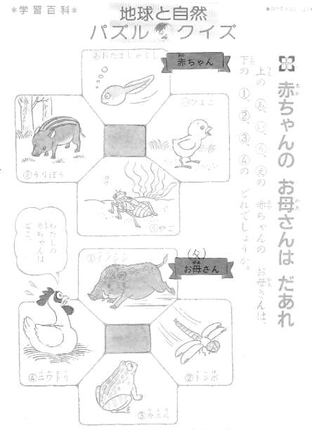 【学習帳おまけページ】