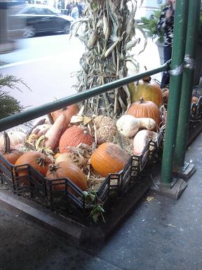 NY.Oct.2010 004