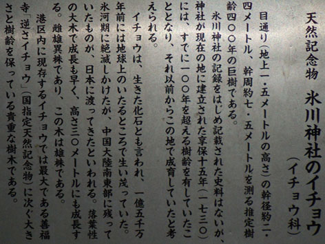 hikawa3.jpg