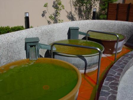 ほの湯楽々園6