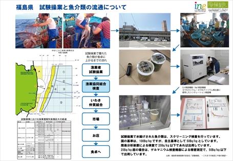 141020江名ツアー魚解説資料1_R