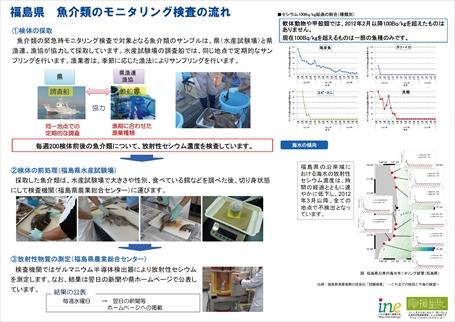 141020江名ツアー魚解説資料2_R