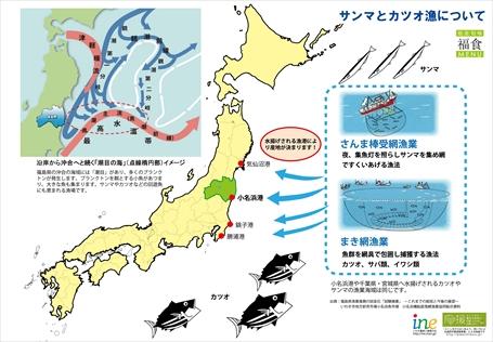 141020江名ツアー魚解説資料3_R