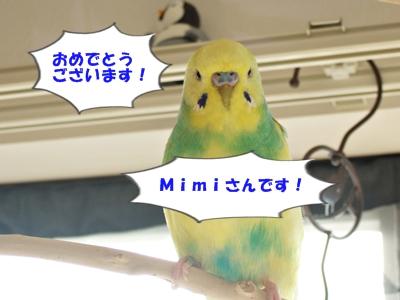 Mimiさん おめでとうございます!