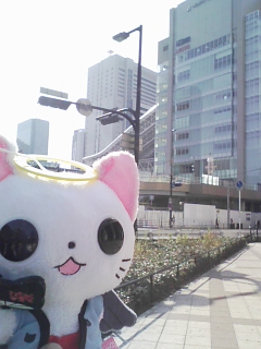 にゃてんし「梅田駅、もうすぐで完成間近ですね・・・」