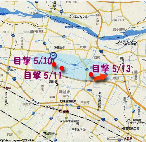 ハヤテ深谷05