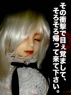 blog20110307p.jpg