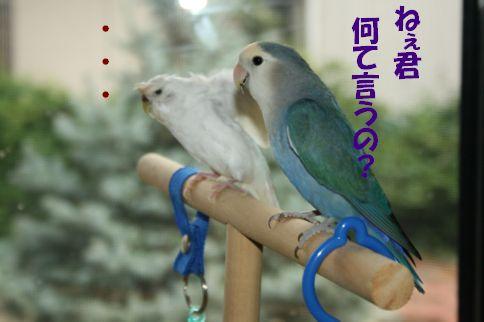 2_20111125000553.jpg