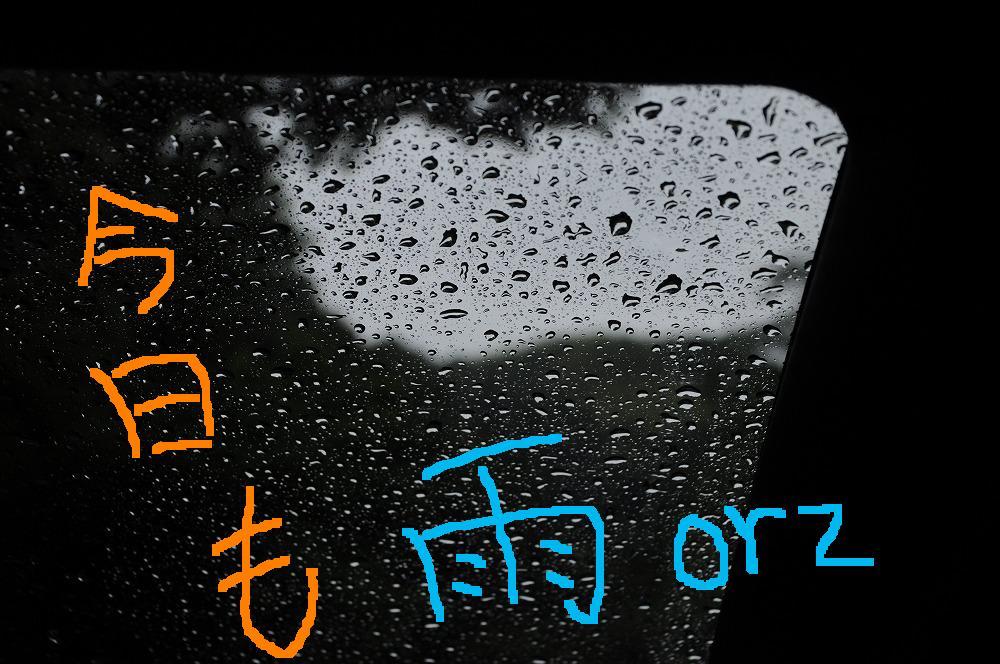 雨 2010.06.15