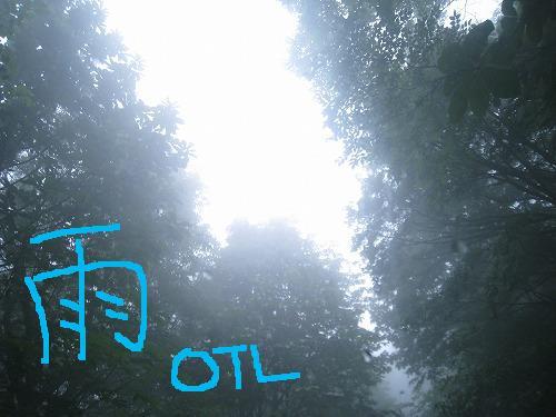 雨霧靄 2010.07.06