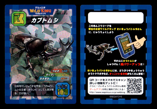 野生の王者 WILD KING WK-013 カブトムシ