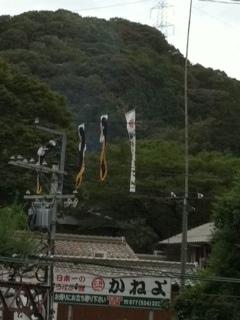 kaneyo0508.jpg