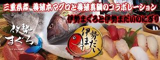 nigiri_main[1]