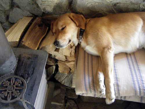 冬の居場所・薪枕