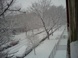 03 snow 6