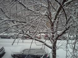 03 snow 5