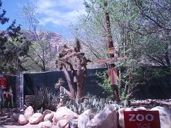 7 - 11 Zoo